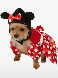 Disfraces para perros Minnie Mouse